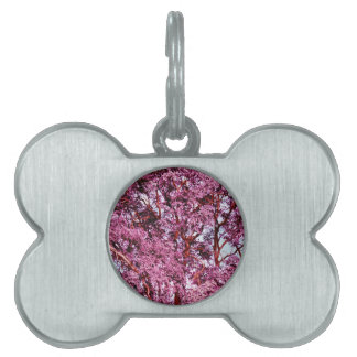 Amo Camo rosado al lado del país de Mishas Placas Mascota