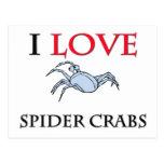 Amo cangrejos de araña postal