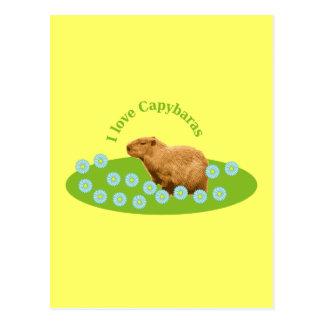 Amo Capybaras Postal