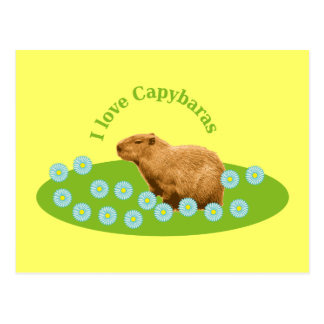 Amo Capybaras Postales