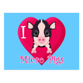 Amo cerdos micro postal