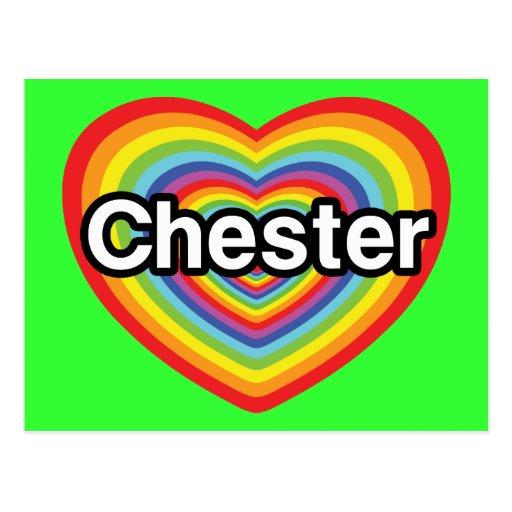Amo Chester: corazón del arco iris Tarjetas Postales