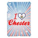 Amo Chester, Virginia Occidental