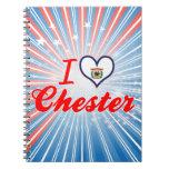 Amo Chester, Virginia Occidental Libretas