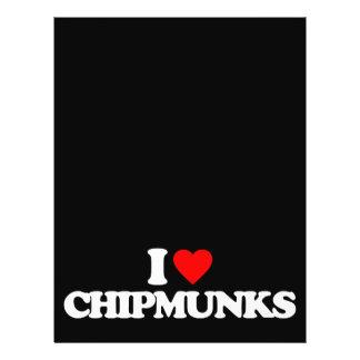 AMO CHIPMUNKS