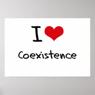Amo coexistencia poster