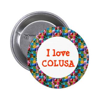 AMO COLUSA PINS