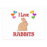 Amo conejos postal