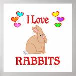 Amo conejos poster
