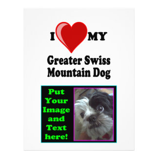 "Amo (corazón) mi mayor perro suizo de la montaña folleto 8.5"" x 11"""