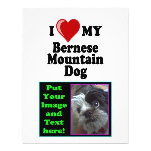 """Amo (corazón) mi perro de montaña de Bernese Folleto 8.5"""" X 11"""""""
