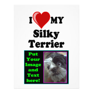 "Amo (corazón) mi perro de Terrier sedoso Folleto 8.5"" X 11"""