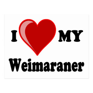 Amo (corazón) mi perro de Weimaraner Postales