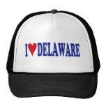 Amo Delaware Gorro