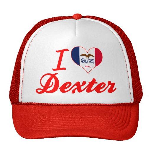 Amo Dexter, Iowa Gorros