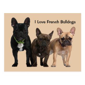 Amo dogos franceses tarjetas postales