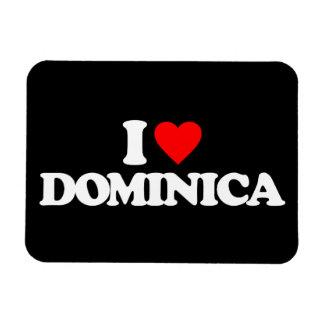 AMO DOMINICA IMANES RECTANGULARES