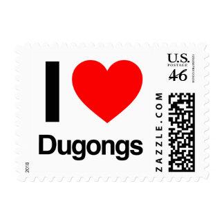 amo dugongs