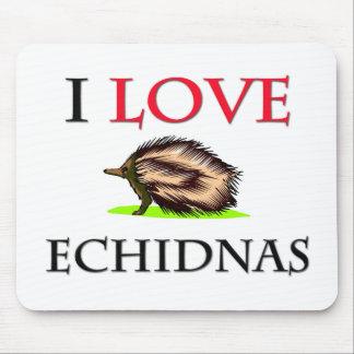 Amo Echidnas Mouse Pads