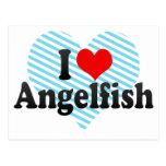 Amo el Angelfish Postales