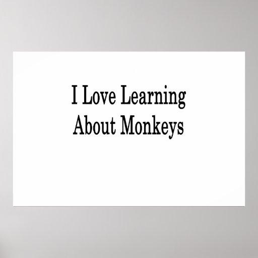 Amo el aprender sobre monos poster