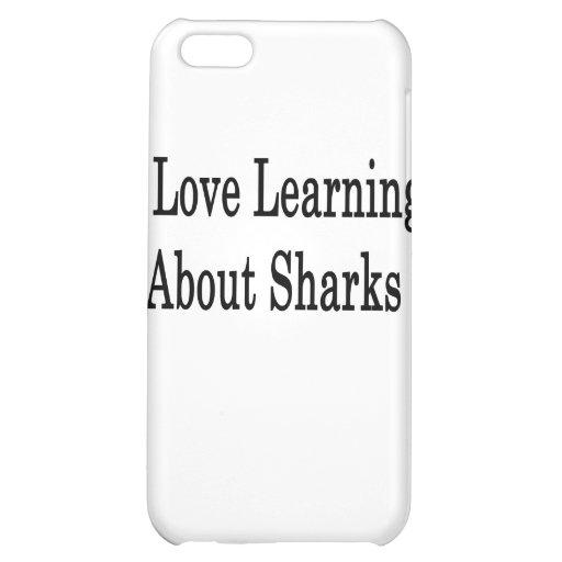 Amo el aprender sobre tiburones