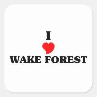 Amo el bosque de la estela pegatina cuadrada