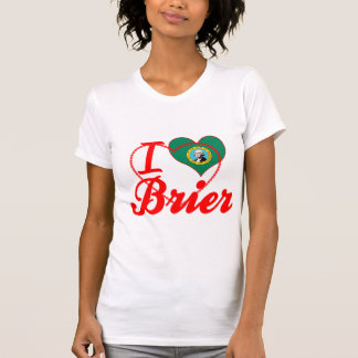 Amo el Brier, Washington Camisetas