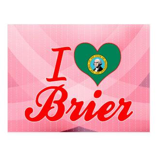 Amo el Brier, Washington Postal