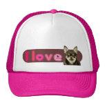 amo el casquillo/el gorra de la chihuahua