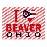 Amo el castor, Ohio Tarjeta Postal