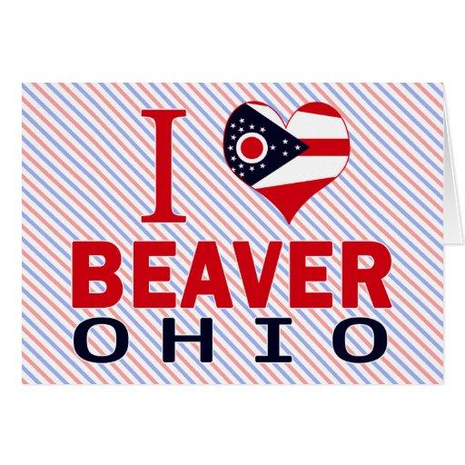 Amo el castor, Ohio Tarjetón