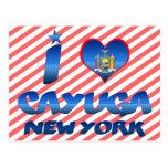 Amo el Cayuga, Nueva York Postal