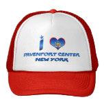 Amo el centro de Davenport, Nueva York Gorros Bordados