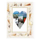 Amo el corazón de las cáscaras del St. Maarten -.  Tarjetas Postales