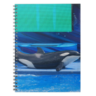 Amo el cuaderno de las orcas