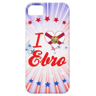 Amo el Ebro la Florida iPhone 5 Protector