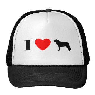 Amo el gorra de Kuvaszok
