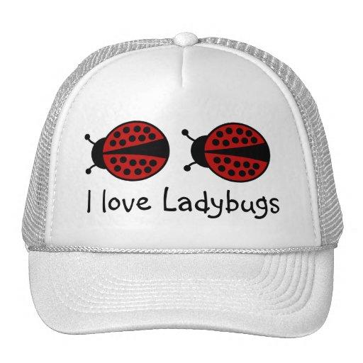 Amo el gorra de las mariquitas