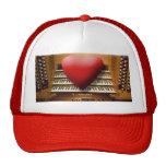 Amo el gorra de los órganos