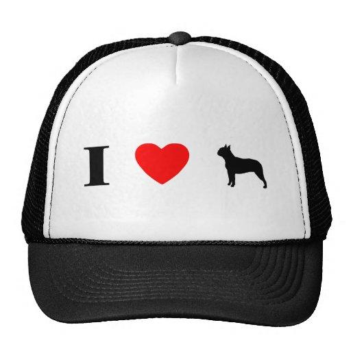 Amo el gorra de los terrieres de Boston