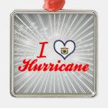 Amo el huracán, Virginia Occidental Ornato