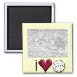 amo el IMÁN de la FOTO del voleibol
