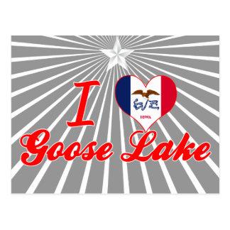 Amo el lago goose, Iowa Tarjetas Postales