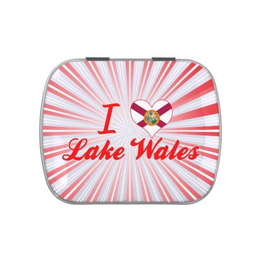 Amo el lago País de Gales, la Florida Latas De Caramelos