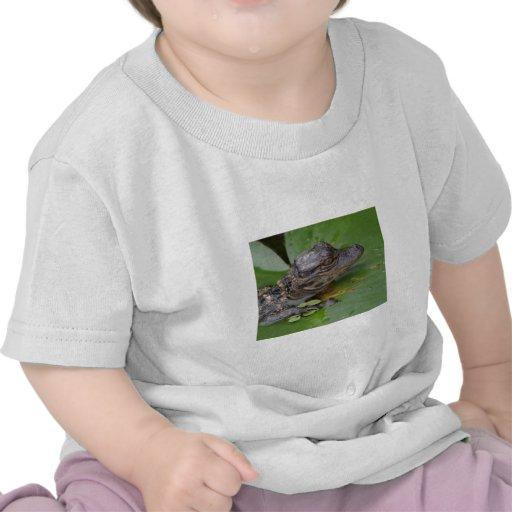 Amo el lirio camisetas