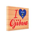 Amo el Ojibwa, Wisconsin Impresiones De Lienzo