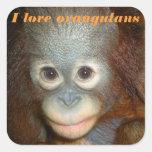 Amo el orangután calcomania cuadradas personalizadas