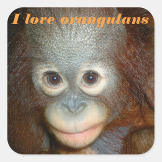 Amo el orangután pegatina cuadrada