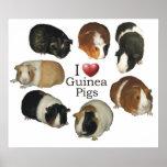 Amo el poster de los conejillos de Indias